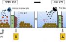 자석으로 세슘 '쏙'…원자력연, 방사성 오염토양 정화기술 개발
