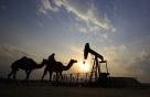 """OPEC+회의 취소에 정유주 급등…""""최악은 석유전쟁 재개"""""""