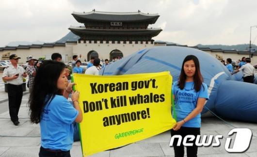 [사진]광화문에서 죽어가는 모형 고래