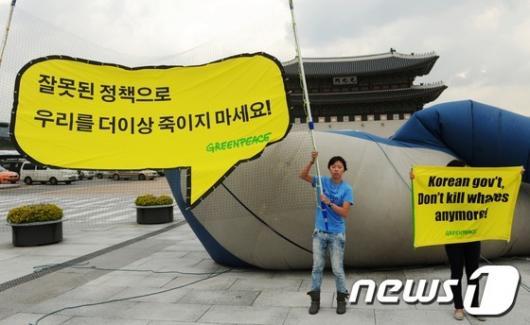 [사진]그린피스, 불법포경 증가 규탄 대형 고래 제작 퍼포먼스