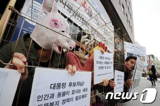 [사진]동물보호단체, 동물복지 정책 제시 촉구 기자회견