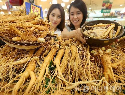[사진]롯데마트, 6년근 햇인삼 반값에 판매