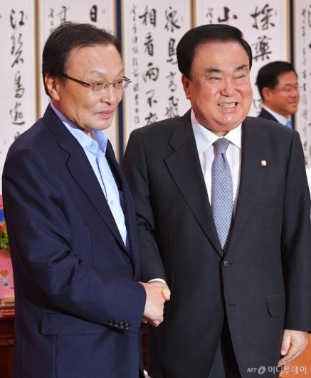 [사진]악수하는 이해찬 신임대표-문희상 국회의장