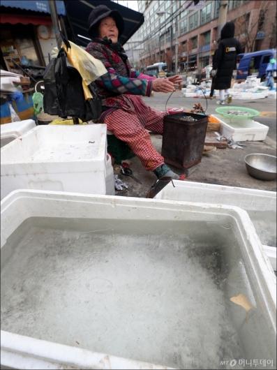 [사진]'한파에 꽝꽝 언 얼음'