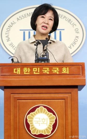 [사진]기자회견 갖는 손혜원