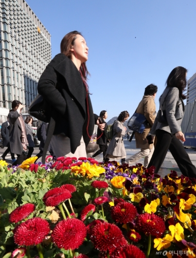 [사진]꽃샘추위와 파란하늘