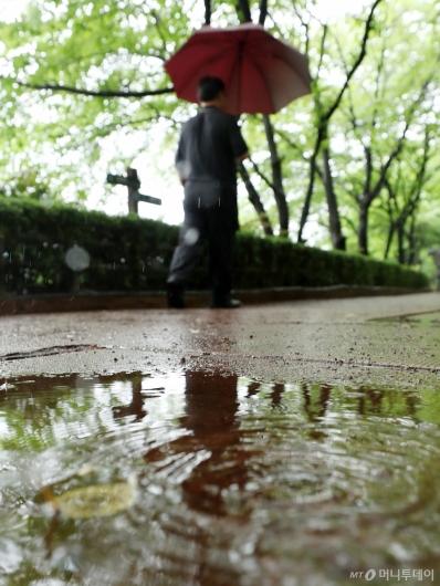 [사진]더위 식혀주는 비