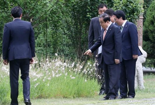 [사진]꽃 바라보는 국회의장