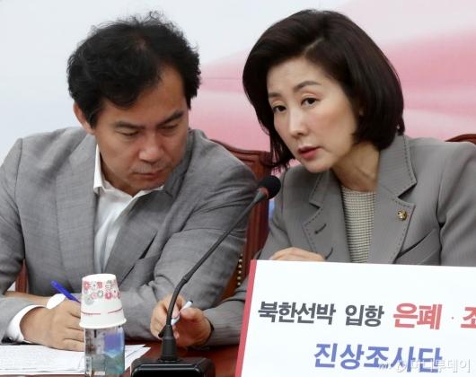 [사진]이야기 나누는 나경원-김영우