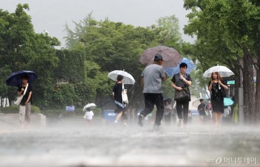 [사진]'거센 소나기'