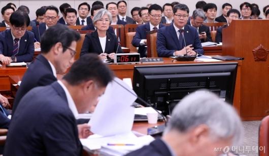 [사진]외통위 답변하는 김연철 장관