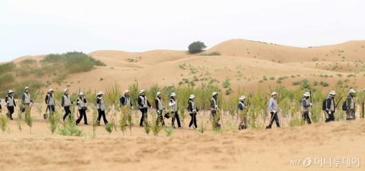 [사진]'사막에 나무를'