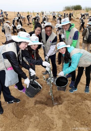 [사진]대한항공, 중국 쿠부치 사막 생태림 조성 위한 식림활동