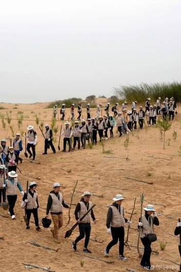 [사진]'사막에 푸른 희망을'