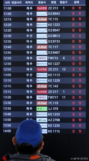 [사진]태풍 영향으로 이어지는 항공편 결항