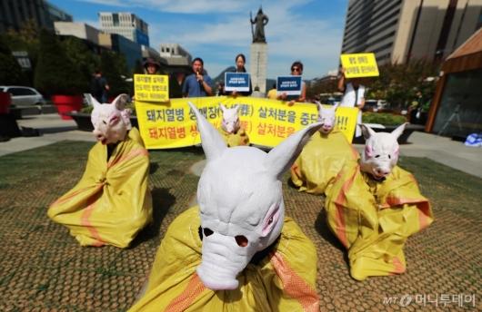[사진]돼지열병 살처분...'생매장은 말아주세요'