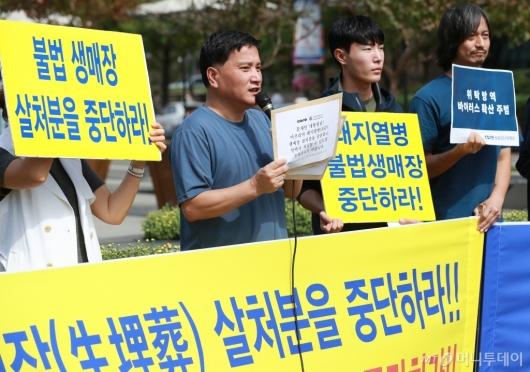 [사진]'돼지 생매장 살처분 중단하라'