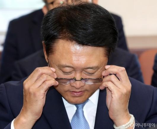 [사진]국감 증인 출석한 이철성 전 경찰청장