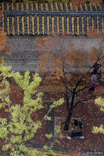 [사진]낙엽 쌓인 덕수궁 돌담길