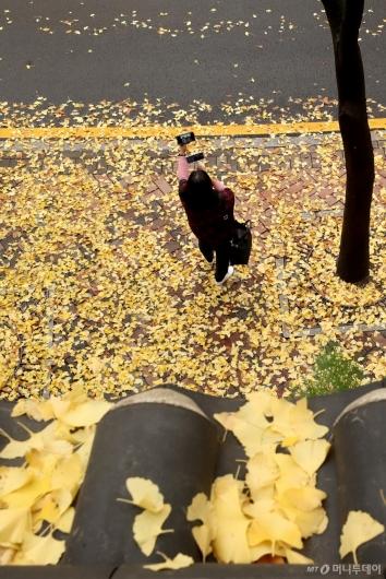 [사진]'가을의 정취 만끽하며'