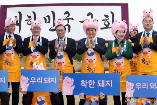 [사진]우리 돼지 착한 돼지