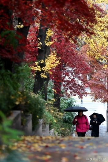 [사진]비 내리는 12월 첫 날