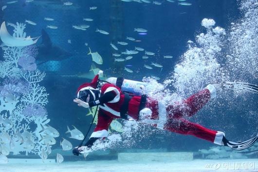 [사진]바다로 간 산타