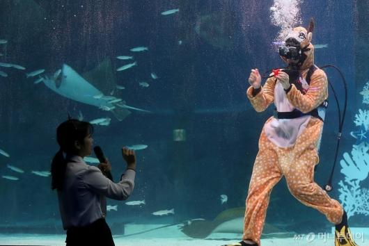 [사진]'물속으로 들어간 루돌프'