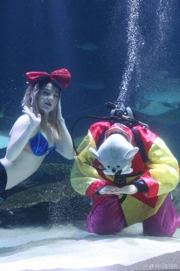 [사진]'수중 세배'