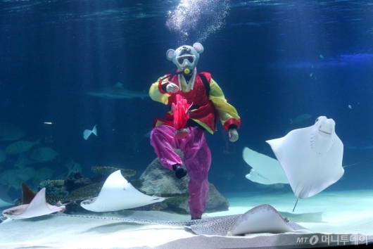 [사진]'물 속에서 제기차기'