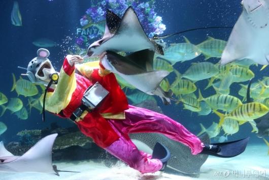 [사진]'설날은 물고기와 함께'