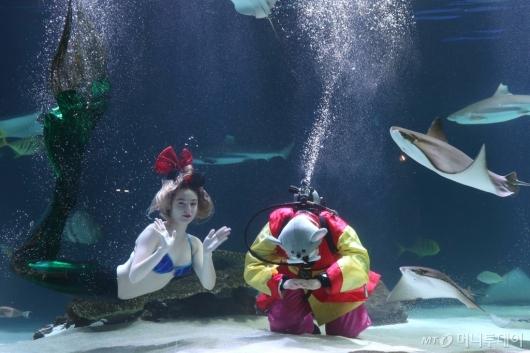 [사진]'물 속 세상에서 보낸 큰절'