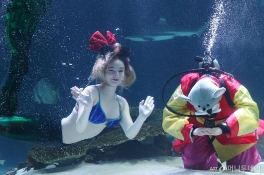 [사진]'바닷속 새해 큰절 받으세요'
