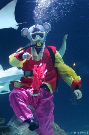 [사진]'수중 제기'