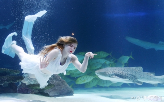[사진]'물 속에 사는 꽃의 요정'
