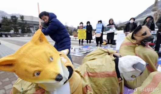 [사진]반려인연대 '개·고양이 식용 반대'
