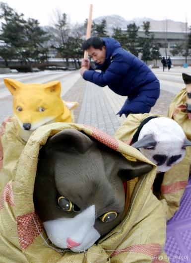 [사진]'개·고양이를 살려주세요'