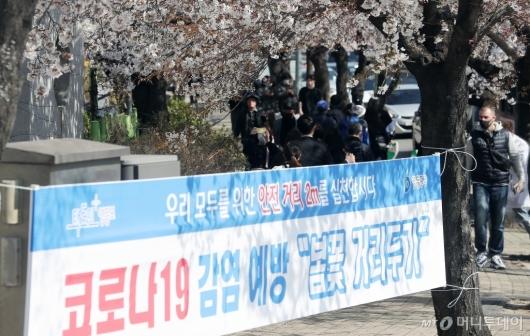 [사진]'봄꽃 거리두기' 무색한 여의도 벚꽃길
