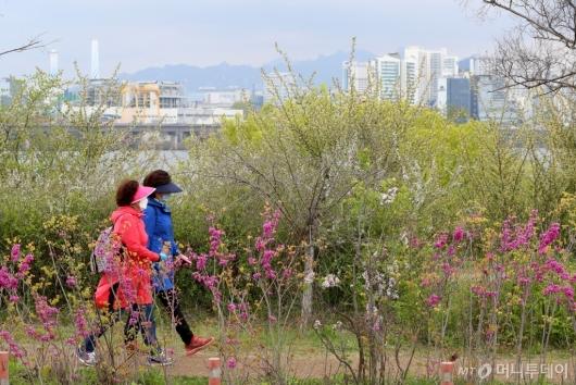 [사진]산책하는 시민들
