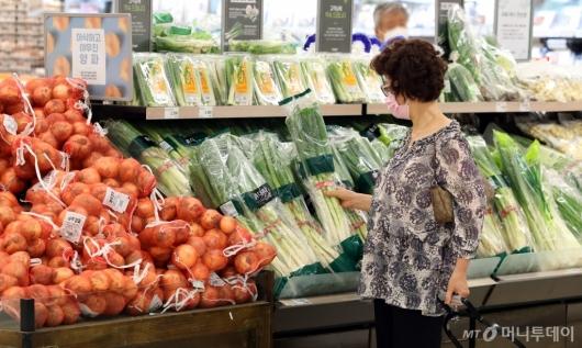 [사진]긴 장마로 채소 값 급등