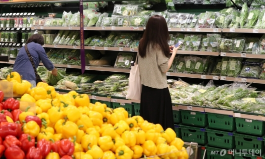 [사진]장마 영향에 채소 가격 '들썩'