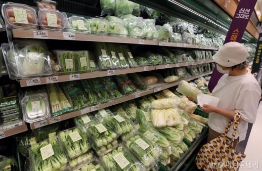 [사진]장마 영향에 들썩이는 채소 가격