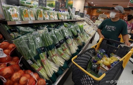 [사진]채소 가격 '들썩'