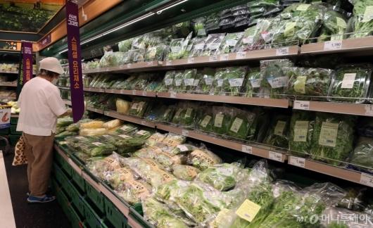 [사진]역대급 장마에 채소 가격 급등