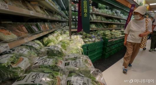 [사진]출하량 차질에 채소 가격 급등