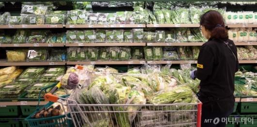 [사진]긴 장마에 채소류 가격 급등