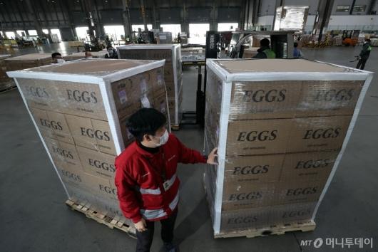 [사진]아시아나항공, 미국산 계란 긴급 수송