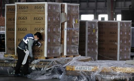 [사진]'미국서 온 계란'
