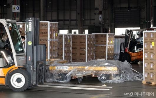 [사진]긴급 수송된 미국산 계란에 분주한 관계자들