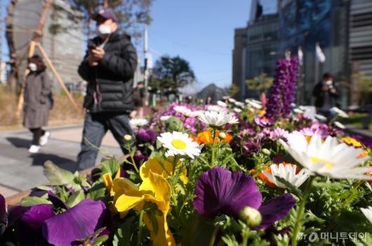 [사진]때늦은 꽃샘추위